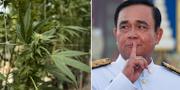 Prayut Chan-o-cha TT