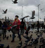 Ett torg i Istanbul Emrah Gurel / TT NYHETSBYRÅN