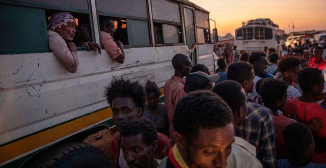 Bild från flyktingläger i Sudan, dit många flytt från Tigray. Nariman El-Mofty / TT NYHETSBYRÅN