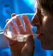 En kvinna som dricker vin. Janerik Henriksson/TT / TT NYHETSBYRÅN