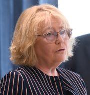 Irene Svenonius (M). Fredrik Sandberg/TT / TT NYHETSBYRÅN