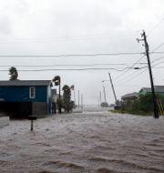 Stormen har dragit in över Texas. Courtney Sacco/Caller-Times / TT NYHETSBYRÅN