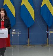 Ann Linde och Mikael Damberg. Skärmdump/regeringen.se