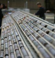 Borrkärnor i trälådor på rad ligger undersöks efter en undersökning i Forsmark/Arkivbild Fredrik Sandberg / TT / TT NYHETSBYRÅN