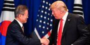 Arkivbild: Donald Trump och Moon Jae-In vid ett tidigare möte NICHOLAS KAMM / AFP