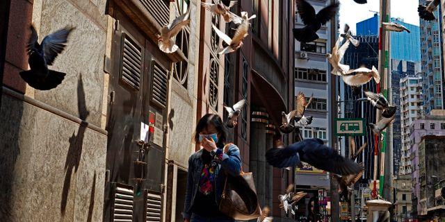 Enligt prognoserna kommer Hongkongs ekonomi minska med 1,2 procent i år Vincent Yu / TT NYHETSBYRÅN