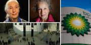 Jane Goodall, Margaret Atwood, BP och British Museum TT