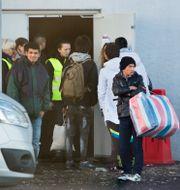 Flyktingar vid Malmömässan 2015. Drago Prvulovic/TT / TT NYHETSBYRÅN