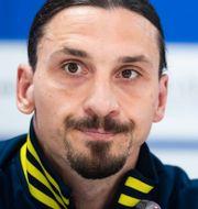 Zlatan, Dublins EM-fotbollsarena Bildbyrån