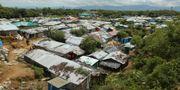 Flyktingläger i Bangladesh. Mahmud Hossain Opu / TT NYHETSBYRÅN