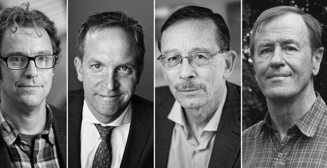 Andreas Bergh, Henrik von Sydow, Lars Calmfors, Mats Persson Pressbilder