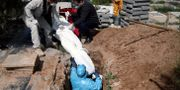 En coronasmittad man begravs i Teheran, Iran. WANA NEWS AGENCY / TT NYHETSBYRÅN