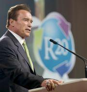 Arnold Schwarzenegger. Ronald Zak / TT NYHETSBYRÅN