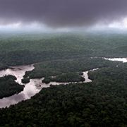 Raincloud hang over the rain forest in Lope Reserve, Gabon, July 4, 2001. Faced with dwindling rain forests, threatened species and pressure for profits in one of the world's poorest regions, conservationists in central Africa are turning to an unlikely ally for help: the timber industry. Saurabh Das / TT NYHETSBYRÅN