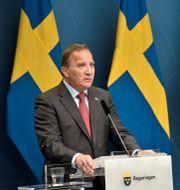 Stefan Löfven. Lars Schröder/TT / TT NYHETSBYRÅN
