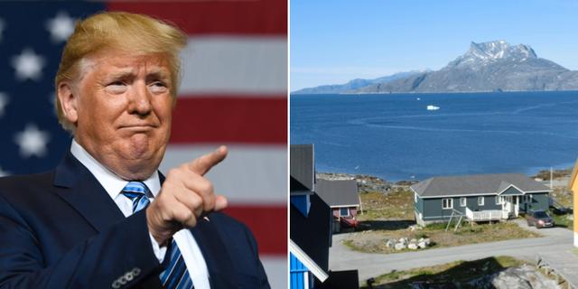 Trump t.v. Grönland t.h. TT