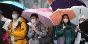 Människor i Wuhan. Koji Sasahara / TT NYHETSBYRÅN