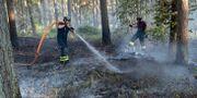 Brandmän släcker en skogsbrand i Åhus i juli 2018.  Johan Nilsson/TT / TT NYHETSBYRÅN