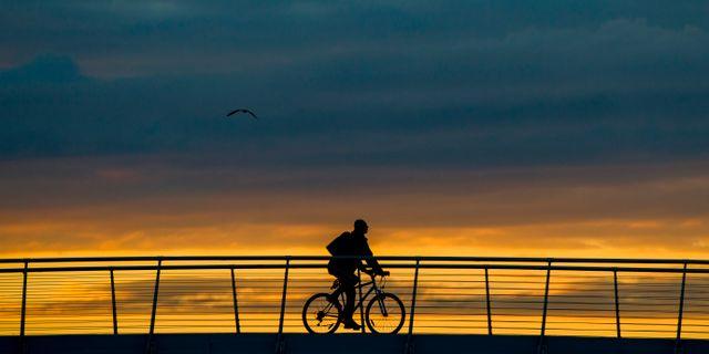 En bro över Kvarken kan bli verklighet. Grøtt, Vegard Wivestad / TT NYHETSBYRÅN