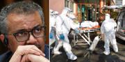 WHO-chefen Tedros Adhanom Ghebreyesus  TT