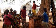 Familjer som bor i flyktingläger i Centralafrikanska republiken. Arkivbild 2016.  Jerome Delay / TT NYHETSBYRÅN