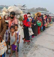 Flyktingar ur folkgruppen rohingya i Bangladesh. TT NYHETSBYRÅN