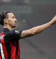 Zlatan Ibrahimovic under en match med sitt Milan.  Luca Bruno / TT NYHETSBYRÅN