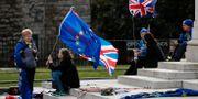 Flera väljare har demonstrerat inför valet med den brittiska flaggan och med EU-flaggan. Frank Augstein / TT NYHETSBYRÅN/ NTB Scanpix