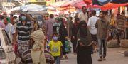 Marknad i Aden. NABIL HASAN / TT NYHETSBYRÅN