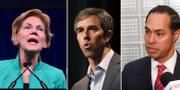 Demokratiska presidentkandidaterna Elizabeth Warren, Beto O'Rourke och Julián Castro. TT