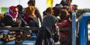 Kurdiska flyktingar i Syrien. DELIL SOULEIMAN / AFP