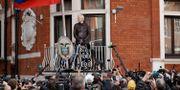 Julian Assange gör ett framträdande från ambassaden i maj 2017. Matt Dunham / TT NYHETSBYRÅN