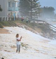 Regn och blåst i Collaroy norr om Sydney på måndagen. Joel Carrett / TT NYHETSBYRÅN