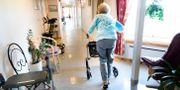 Kvinna på äldreboende/Arkivbild.  Kallestad, Gorm / TT NYHETSBYRÅN