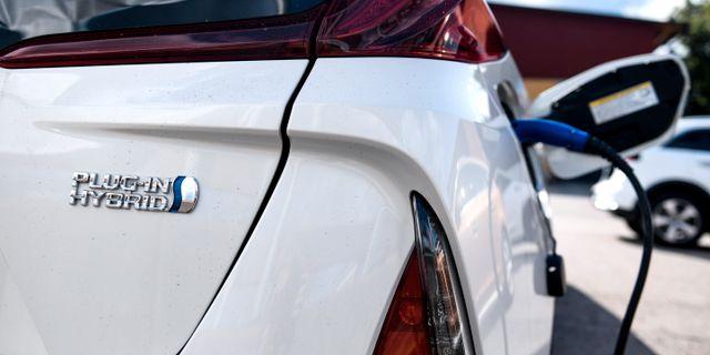 Toyota Prius Plug-in. Arkivbild. Pontus Lundahl/TT / TT NYHETSBYRÅN
