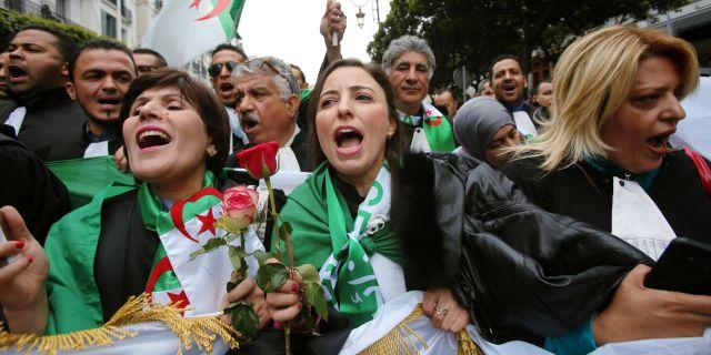 Jurister demonstrerar i Alger.  RAMZI BOUDINA / TT NYHETSBYRÅN