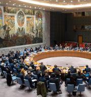 FN:s säkerhetsråd. Mary Altaffer / TT NYHETSBYRÅN
