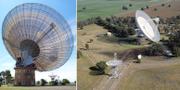 Radioteleskopet i Parkes. CSIRO/Wikimedia och Diceman Stephen West/Wikimedia