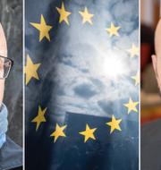 Karl-Petter Thorwaldsson, LO och Mattias Dahl, Svenskt näringsliv. TT