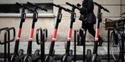 Elsparkcyklar i Paris. Arkivbild. PHILIPPE LOPEZ / AFP