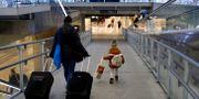 Ett barn med en tågvärd på Gare de Lyon i Paris. Gonzalo Fuentes / TT NYHETSBYRÅN