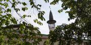 Illustrationsbild. Stockholms moské vid Björns trädgård Stina Stjernkvist/TT / TT NYHETSBYRÅN