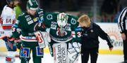 Johan Mattsson leds av isen. Thomas Johansson / TT NYHETSBYRÅN