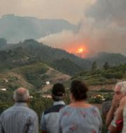 Boende tittar på lågorna från skogsbranden.  DESIREE MARTIN / AFP