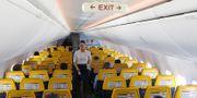 Arkivbild: Flygvärdinna på flight mellan Dublin och London. TT