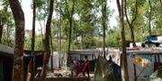 Arkivbild, flyktingläger i Bangladesh. MUNIR UZ ZAMAN / AFP