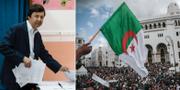 Said Bouteflika / Algerisk flagga vid demonstration TT