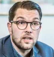 Jimmie Åkesson.  Lars Pehrson/SvD/TT / TT NYHETSBYRÅN