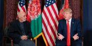 Donald Trump i ett möte med Afghanistans president Ashraf Ghani.  Alex Brandon / TT NYHETSBYRÅN