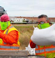 Stadsanställda i Corpus Christi delar ut sandsäckar till invånare inför stormens ankomst Courtney Sacco / TT NYHETSBYRÅN